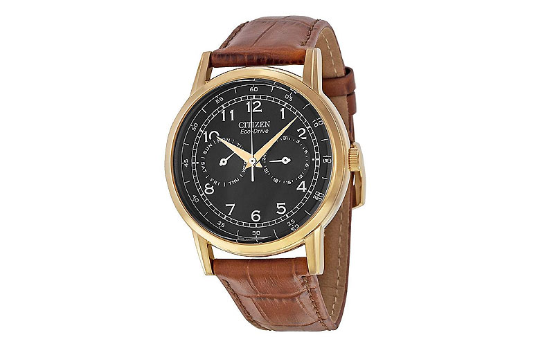 Citizen Eco-Drive AO9003-08E Men's Leather Watch