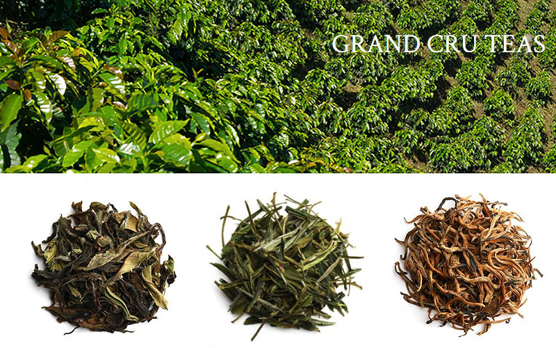 Palais Des Thes Grand Cru Teas for Sale